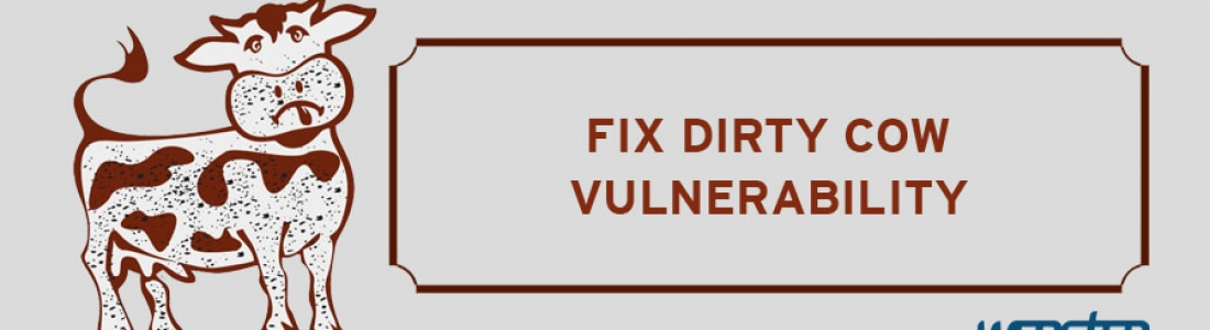 New Linux Operating System Vulnerability for Magento Platform